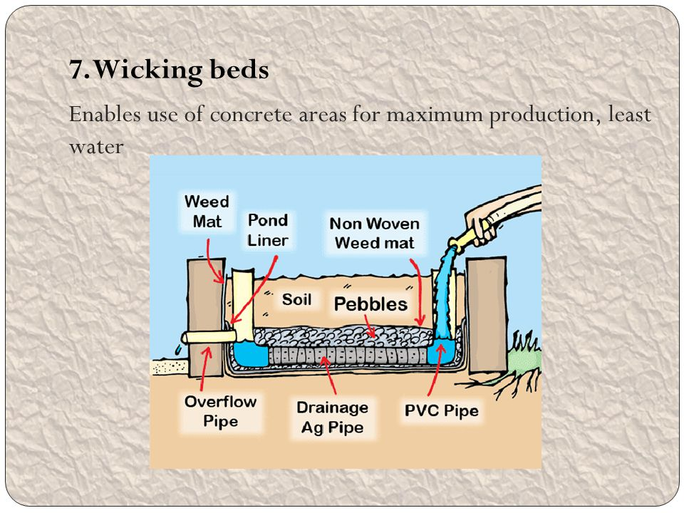 Enables use of concrete areas for maximum production, least water 7. Wicking beds