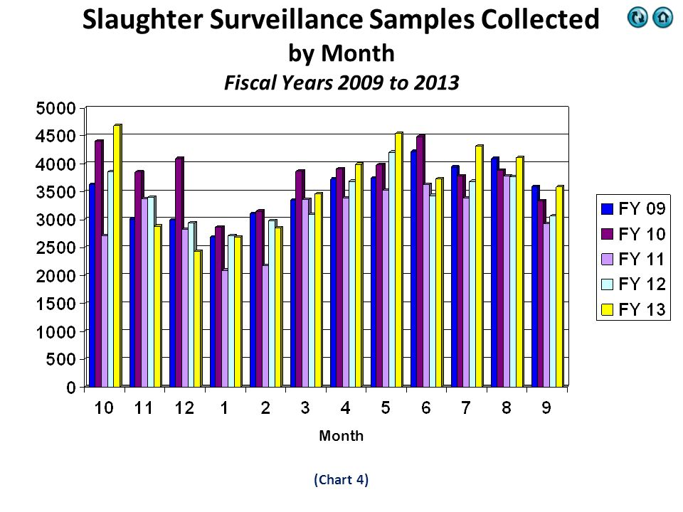 (Chart 4) Slaughter Surveillance Samples Collected by Month Fiscal Years 2009 to 2013 Month