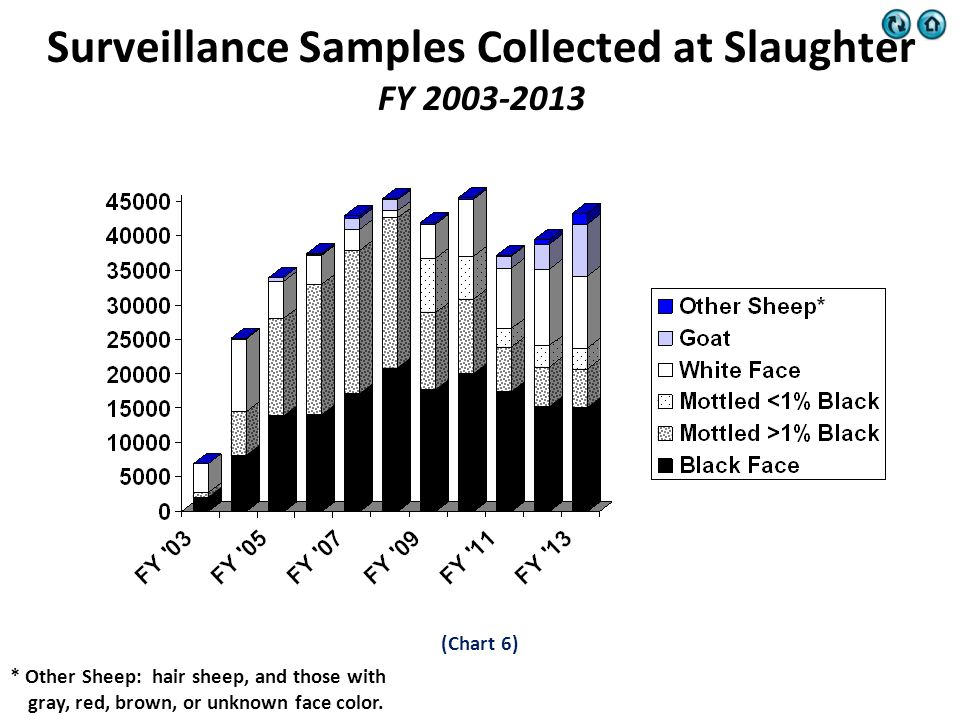 Surveillance Samples Collected at Slaughter FY 2003-2013 * Other Sheep: hair sheep, and those with gray, red, brown, or unknown face color.