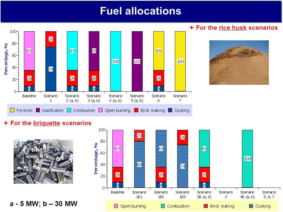 7  For the rice husk scenarios  For the briquette scenarios a - 5 MW; b – 30 MW