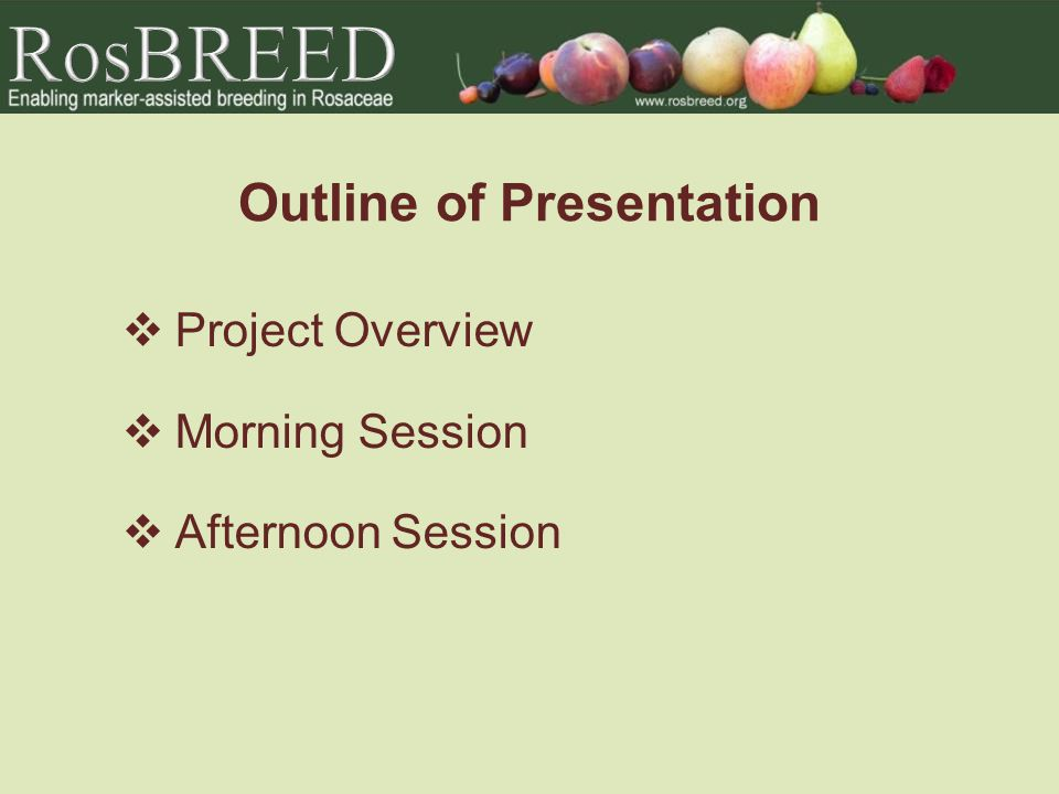 Outline of Presentation  Project Overview  Morning Session  Afternoon Session