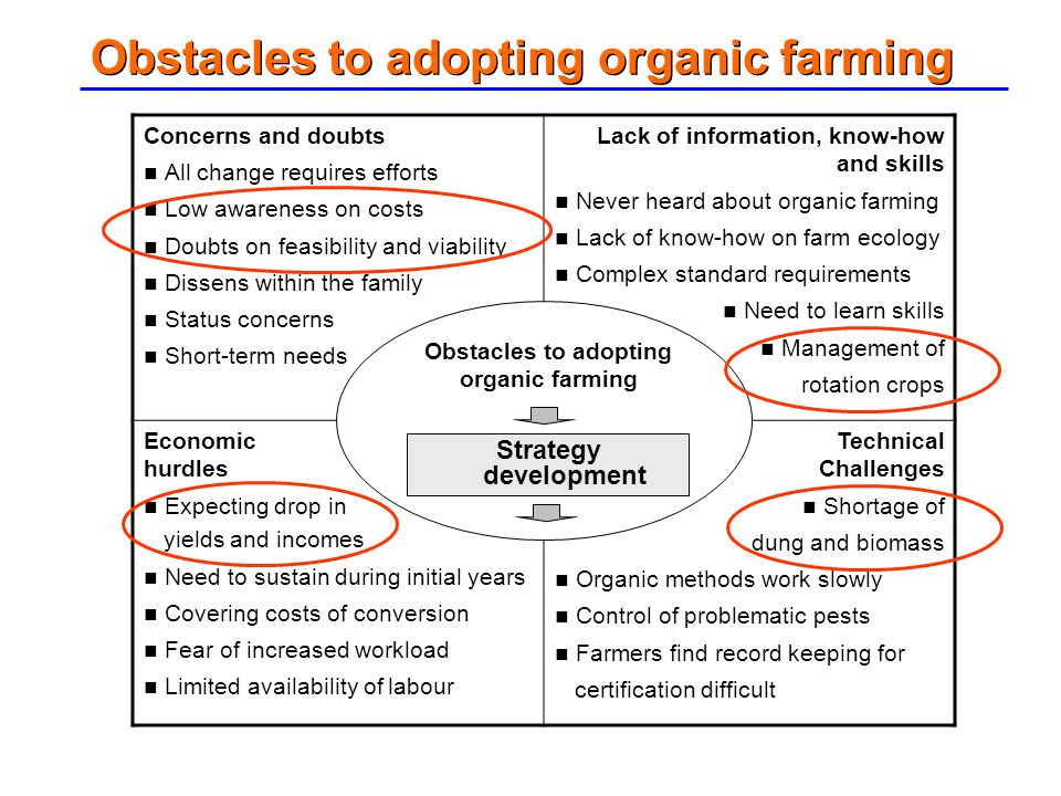Obstacles to adopting organic farming Concerns and doubts All change requires efforts Low awareness on costs Doubts on feasibility and viability Disse