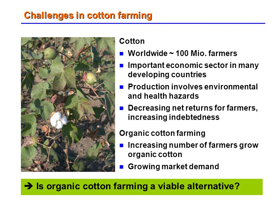 Challenges in cotton farming Cotton Worldwide ~ 100 Mio. farmers Important economic sector in many developing countries Production involves environmen