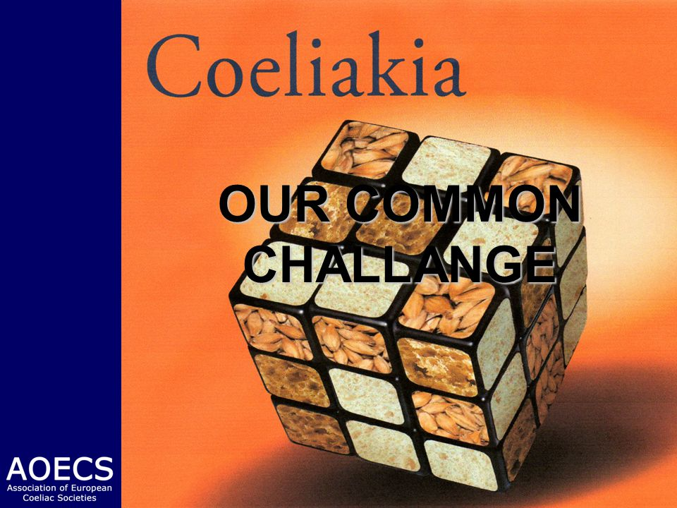 OUR COMMON CHALLANGE