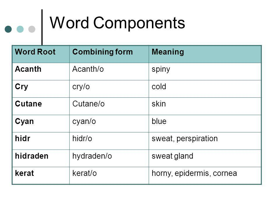 Word Components Word RootCombining formMeaning AcanthAcanth/ospiny Crycry/ocold CutaneCutane/oskin Cyancyan/oblue hidrhidr/osweat, perspiration hidradenhydraden/osweat gland keratkerat/ohorny, epidermis, cornea