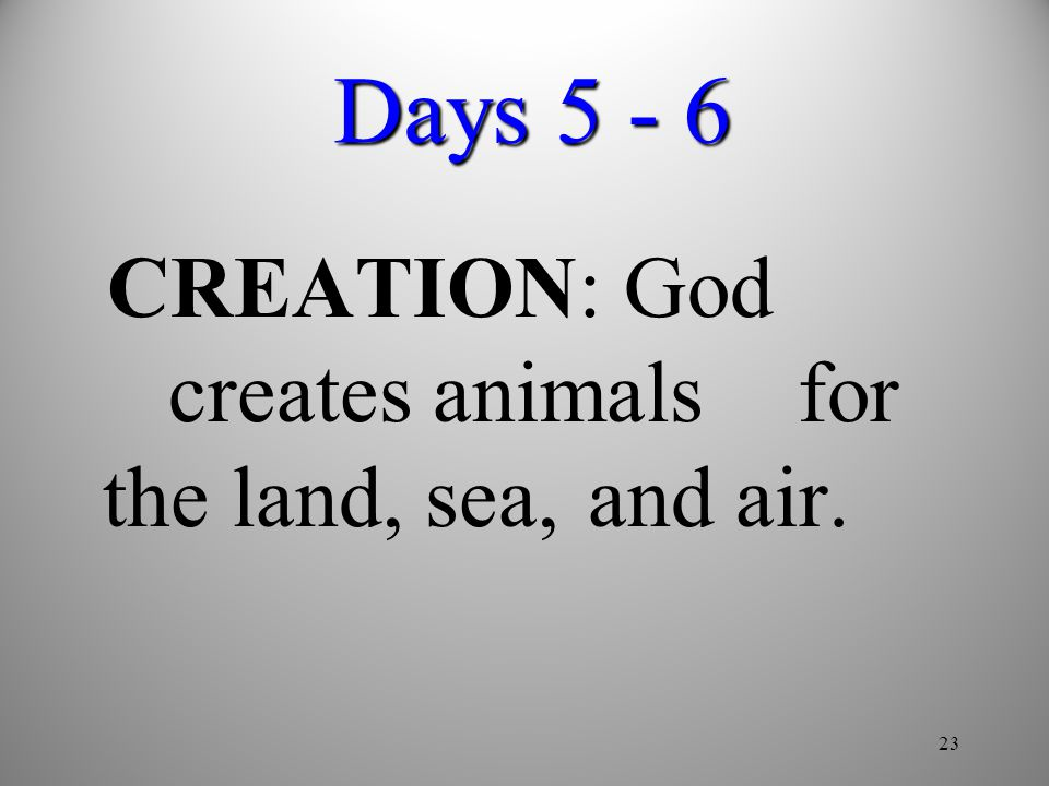 23 Days 5 - 6 CREATION: God creates animals for the land, sea, and air.