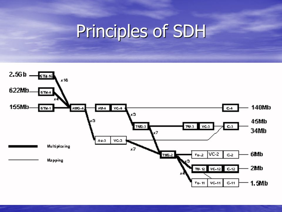 Survivability The deployment of optical fiber throughout the network and adoption of the SDH network element makes end to end monitoring and maintenance of network integrity a possibility.