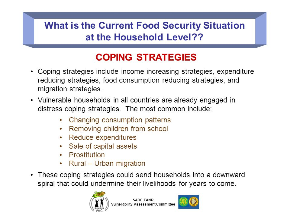 SADC FANR Vulnerability Assessment Committee VAC What is the Current Food Security Situation at the Household Level?? COPING STRATEGIES Coping strateg