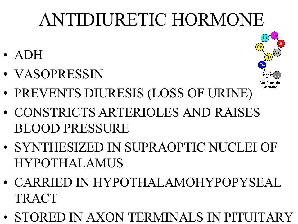 EFFECTS OF ANGIOTENSIN II STIMULATES SECRETION OF ADH STIMULATES WATER REABSORPTION COMPLEMENTS ALDOSTERONE STIMULATES SECRETION OF ALDOSTERONE BY ADRENAL GLANDS INCREASES RETENTION OF SODIUM INCREASES LOSS OF POTASSIUM STIMULATES THIRST INCREASES FLUID CONSUMPTION INCREASES BLOOD VOLUME INCREASES CONSTRICTION OF ARTERIOLES ELEVATES SYSTEMIC BLOOD PRESSURE
