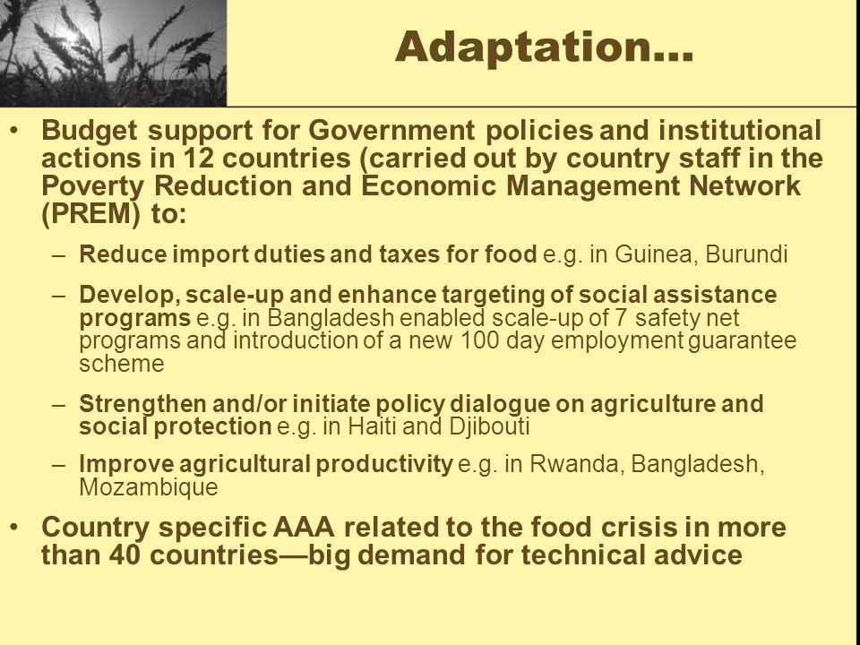 Adaptation… Budget support for Government policies and institutional actions in 12 countries (carried out by country staff in the Poverty Reduction and Economic Management Network (PREM) to: –Reduce import duties and taxes for food e.g.