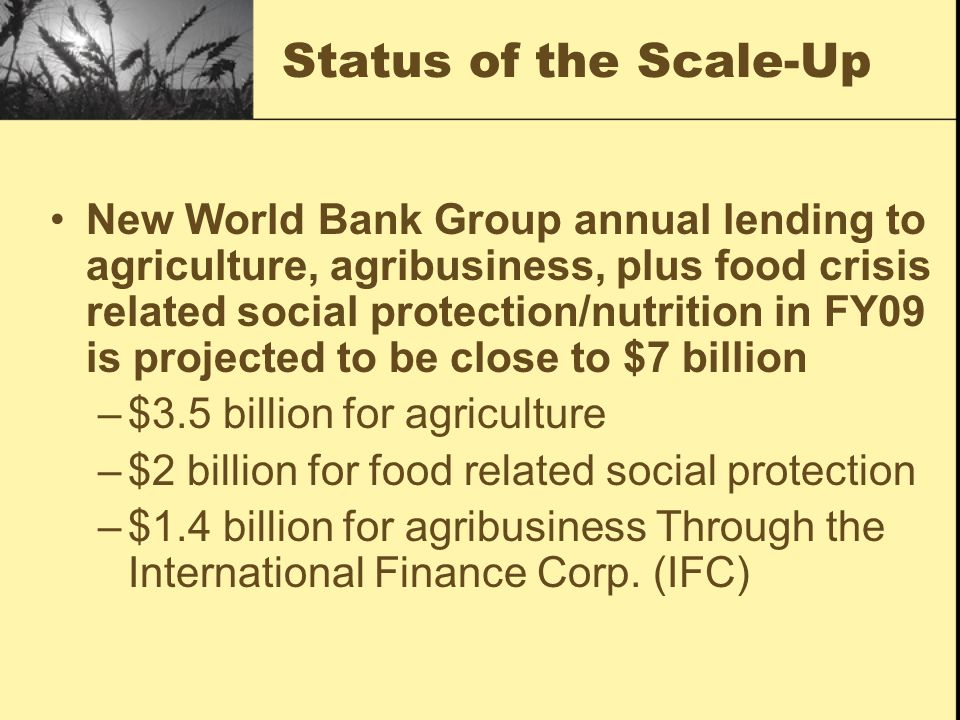 Status of the Scale-Up New World Bank Group annual lending to agriculture, agribusiness, plus food crisis related social protection/nutrition in FY09 is projected to be close to $7 billion –$3.5 billion for agriculture –$2 billion for food related social protection –$1.4 billion for agribusiness Through the International Finance Corp.