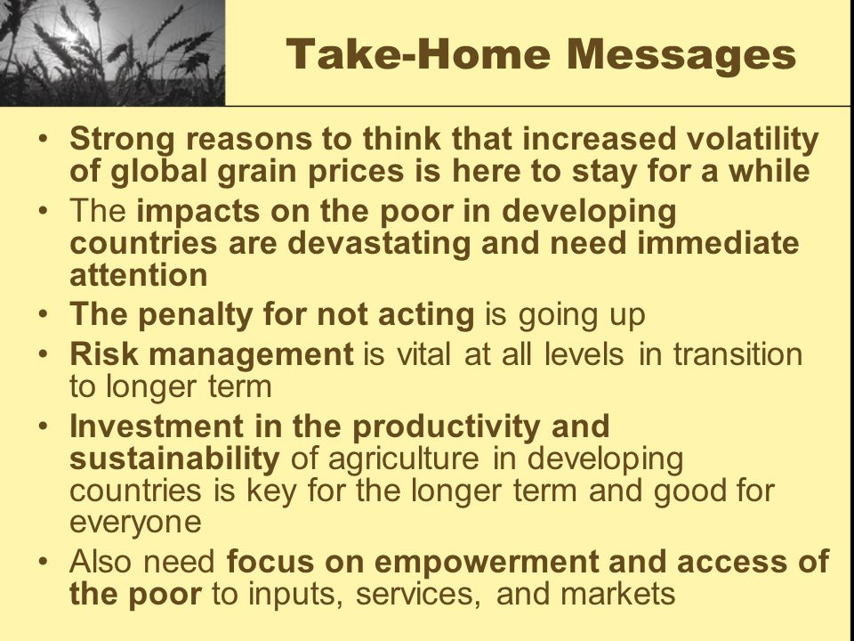 Take-Home Messages Strong reasons to think that increased volatility of global grain prices is here to stay for a while The impacts on the poor in developing countries are devastating and need immediate attention The penalty for not acting is going up Risk management is vital at all levels in transition to longer term Investment in the productivity and sustainability of agriculture in developing countries is key for the longer term and good for everyone Also need focus on empowerment and access of the poor to inputs, services, and markets