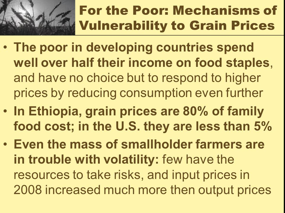 For the Poor: Mechanisms of Vulnerability to Grain Prices The poor in developing countries spend well over half their income on food staples, and have no choice but to respond to higher prices by reducing consumption even further In Ethiopia, grain prices are 80% of family food cost; in the U.S.