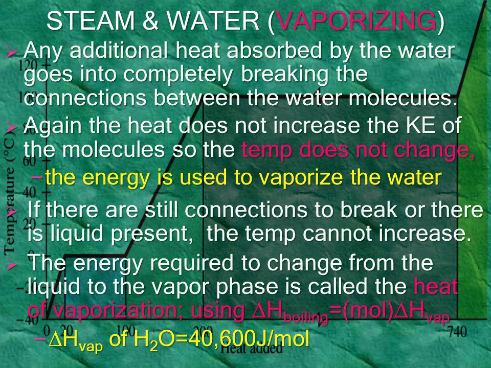  Any additional heat absorbed by the water goes into completely breaking the connections between the water molecules.  Again the heat does not incre