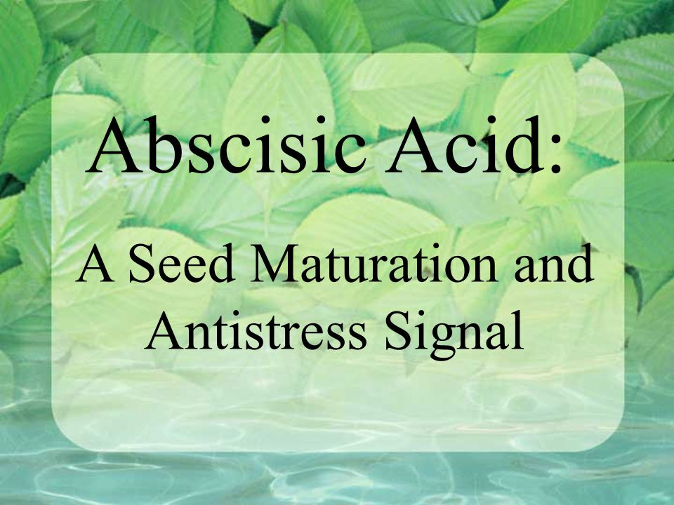 Abscisic Acid: A Seed Maturation and Antistress Signal