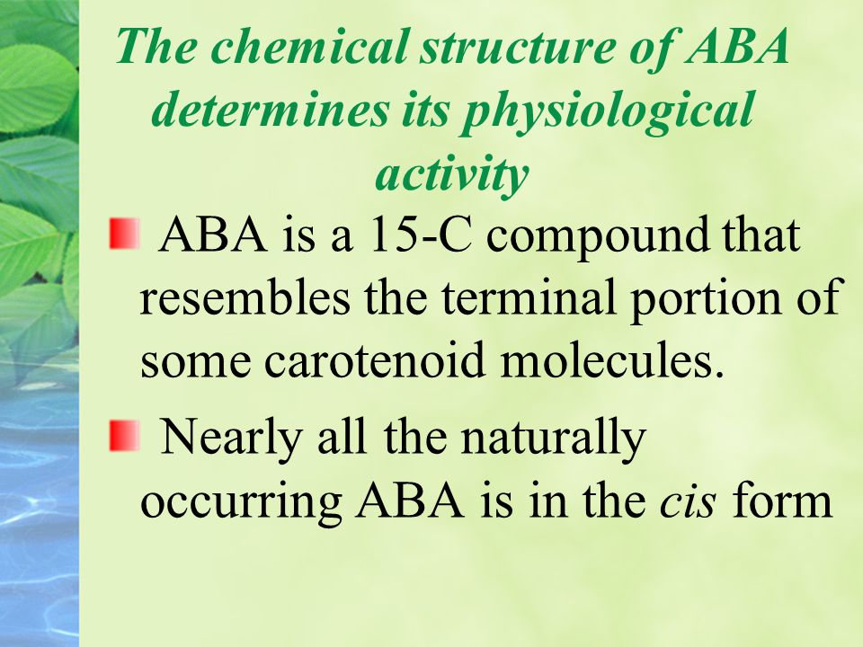 The chemical structure of ABA determines its physiological activity ABA is a 15-C compound that resembles the terminal portion of some carotenoid mole
