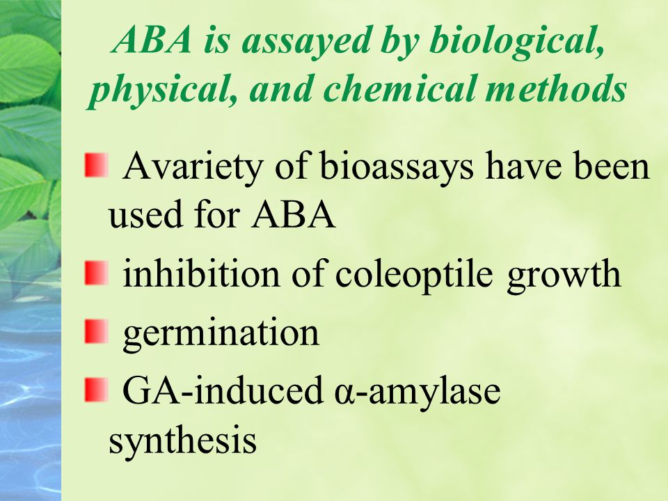ABA is assayed by biological, physical, and chemical methods Avariety of bioassays have been used for ABA inhibition of coleoptile growth germination