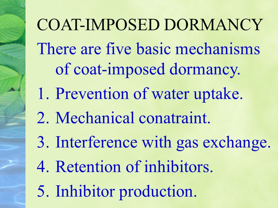COAT-IMPOSED DORMANCY There are five basic mechanisms of coat-imposed dormancy. 1.Prevention of water uptake. 2.Mechanical conatraint. 3.Interference