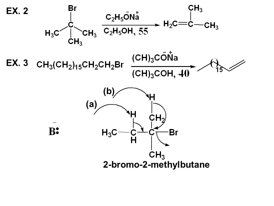 EX. 2 EX. 3 (b) (a) 2-bromo-2-methylbutane