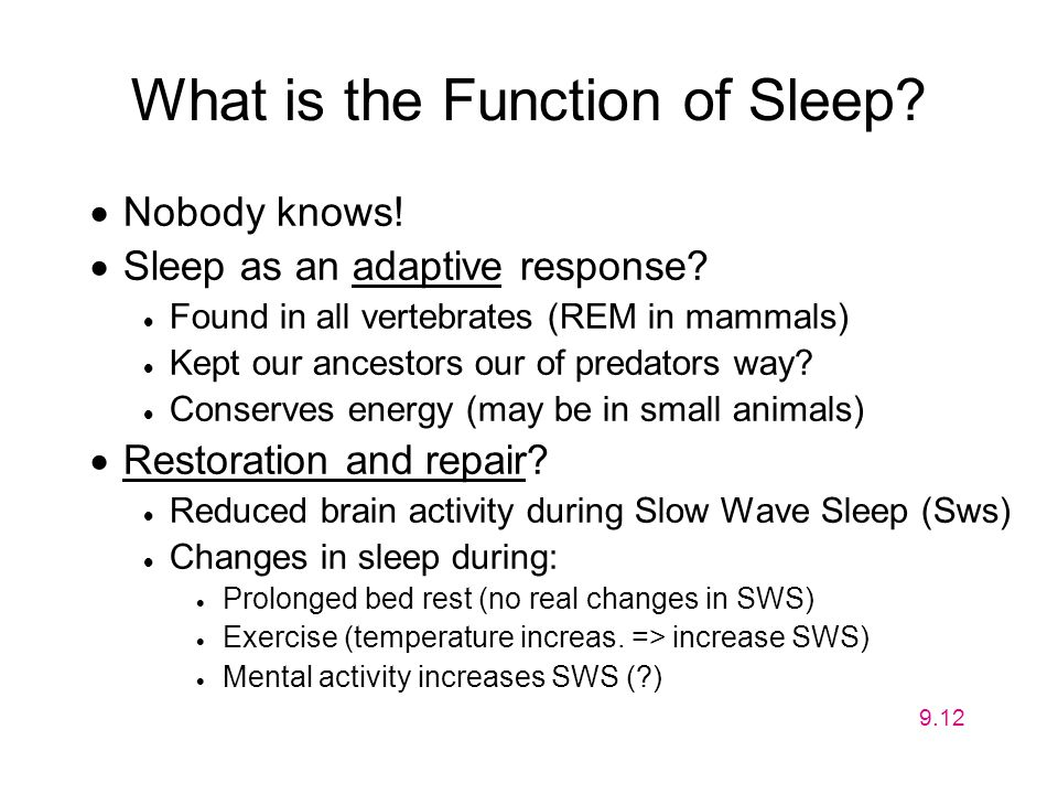 What is the Function of Sleep?  Nobody knows!  Sleep as an adaptive response?  Found in all vertebrates (REM in mammals)  Kept our ancestors our o
