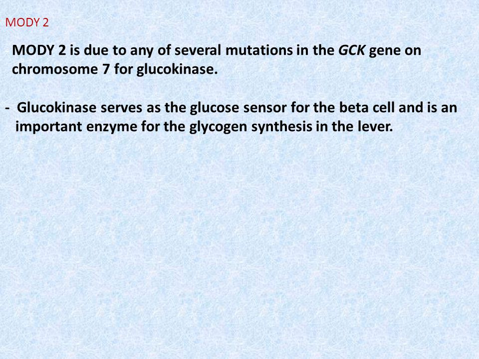 MODY 2 - MODY 2 is due to any of several mutations in the GCK gene on chromosome 7 for glucokinase. - Glucokinase serves as the glucose sensor for the