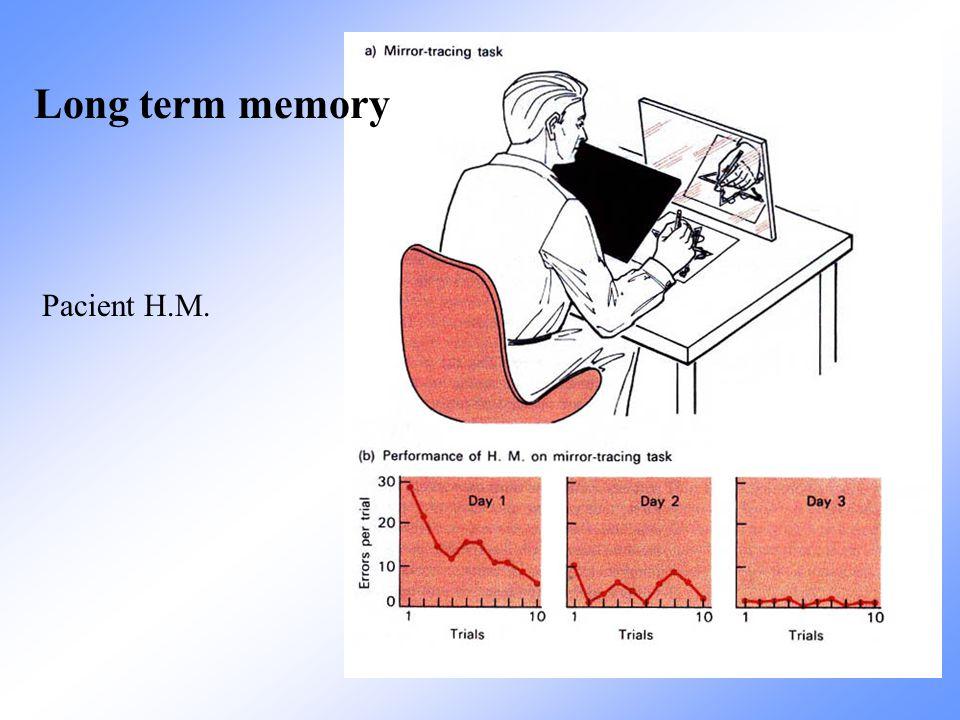 Pacient H.M. Long term memory