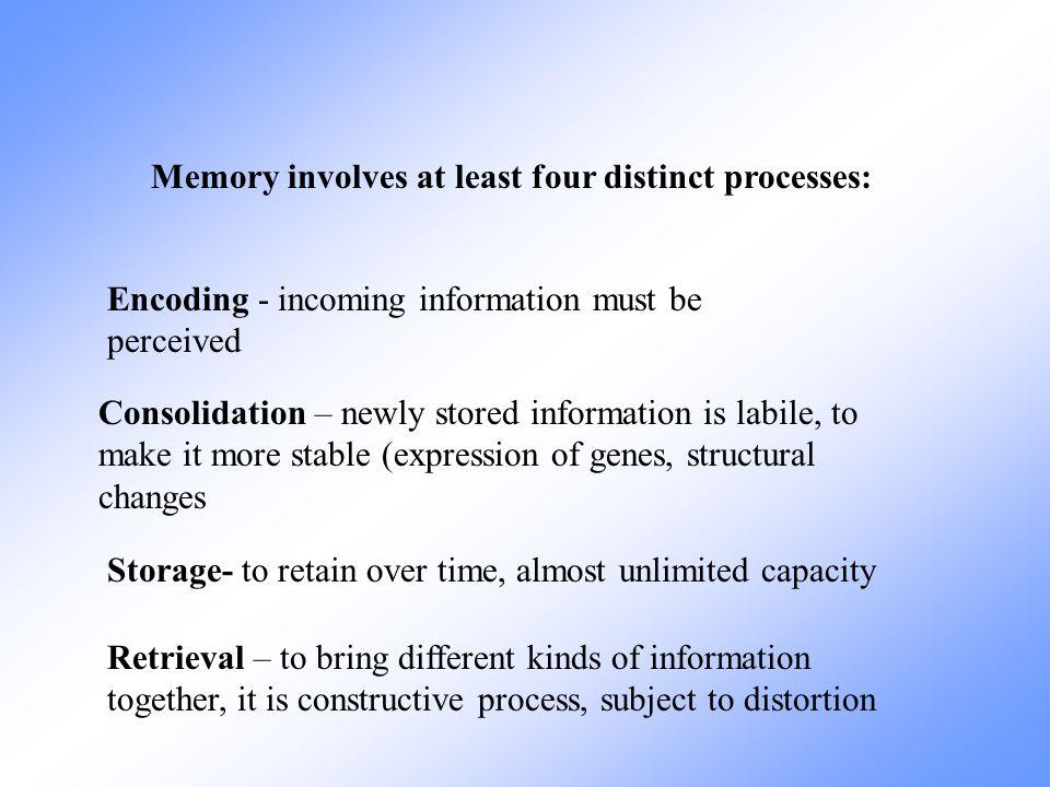 Declarative Explicit Nondeclarative Implicit Epizodic Store events autobiografic Semantic Store facts Non associative Associative learning Long term memory classification