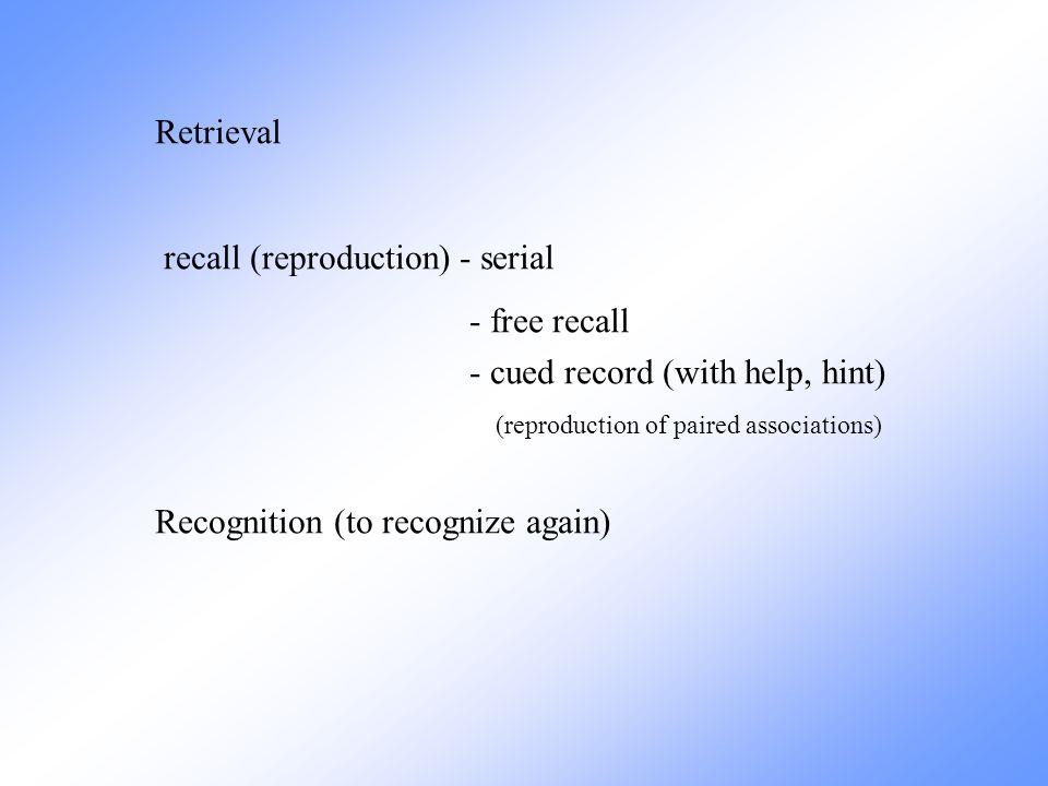 Temporal lobe lesion