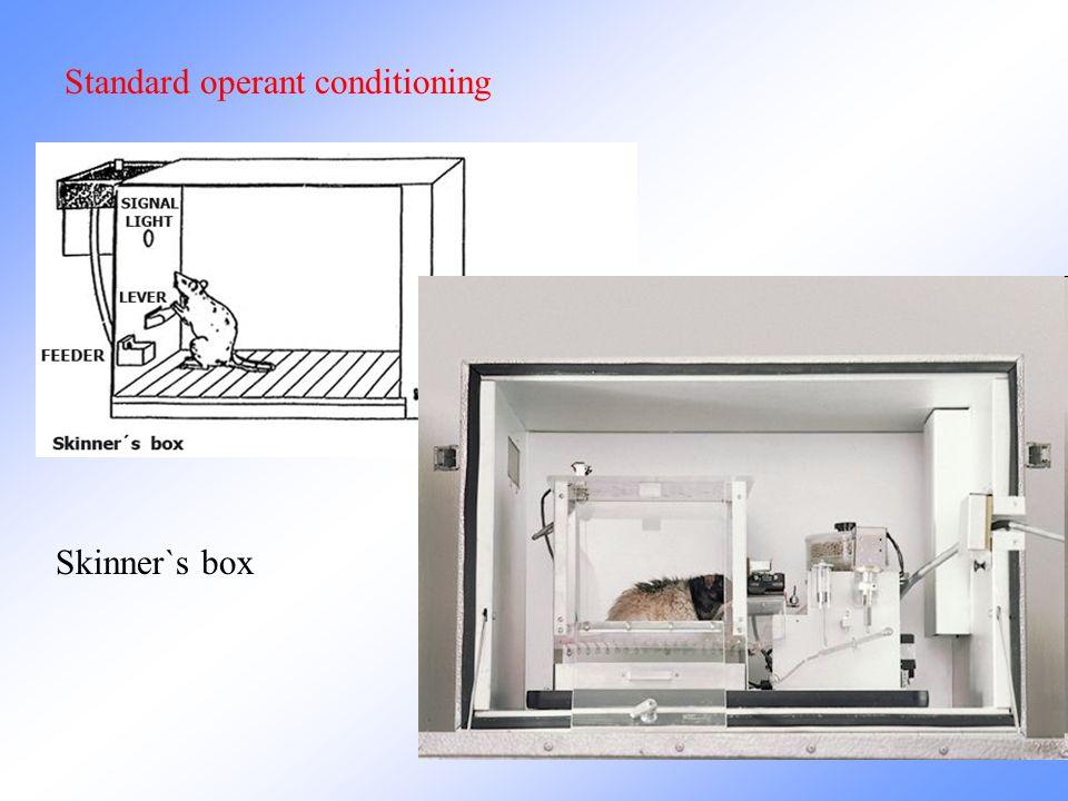 Standard operant conditioning Skinner`s box