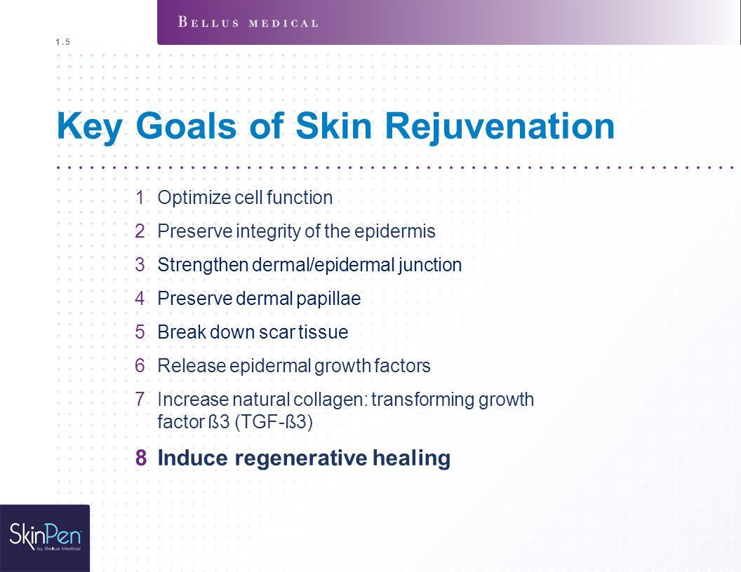 Key Goals of Skin Rejuvenation 1Optimize cell function 2Preserve integrity of the epidermis 3Strengthen dermal/epidermal junction 4Preserve dermal pap