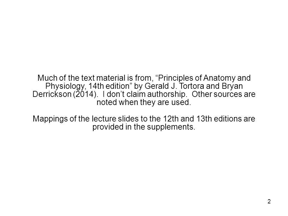 43 Adrenergic Neurons Adrenergic neurons release norepinephrine, sometimes called noradrenalin.
