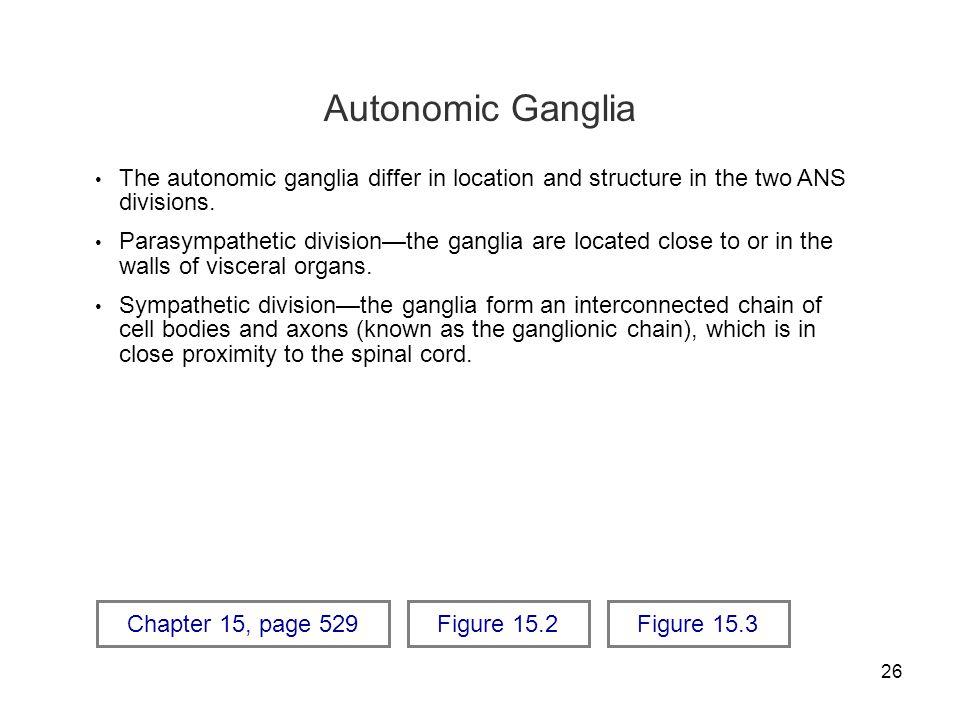 26 Autonomic Ganglia The autonomic ganglia differ in location and structure in the two ANS divisions. Parasympathetic division—the ganglia are located