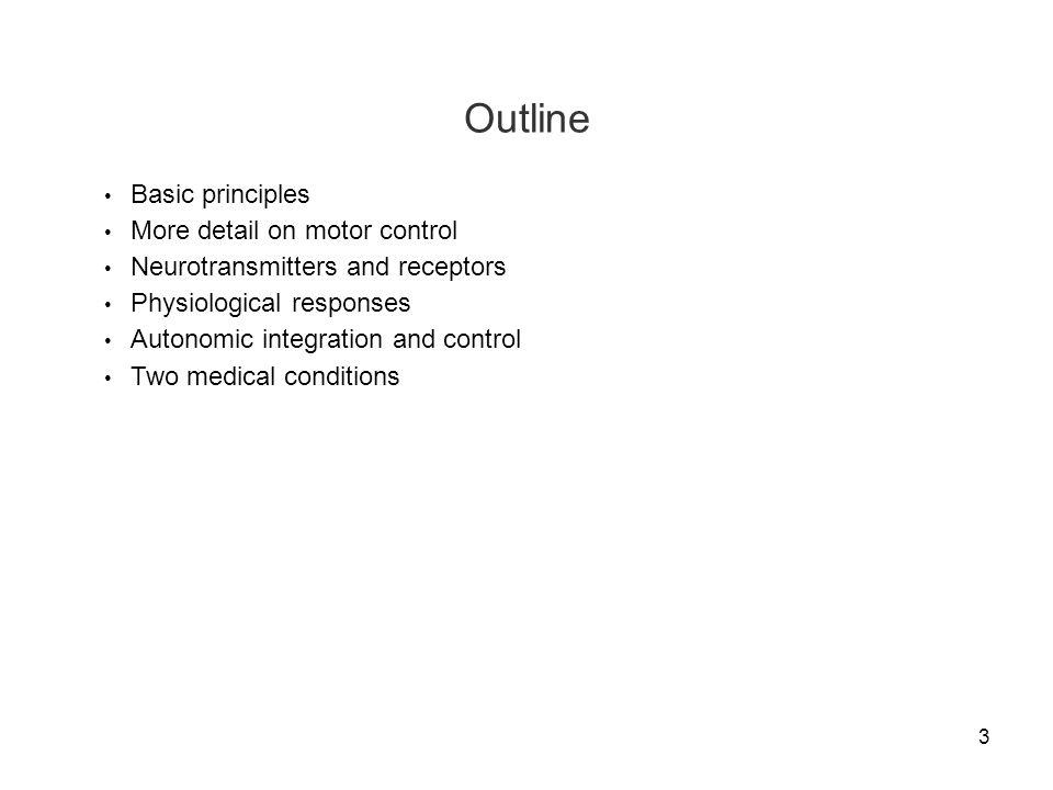 4 Basic Principles