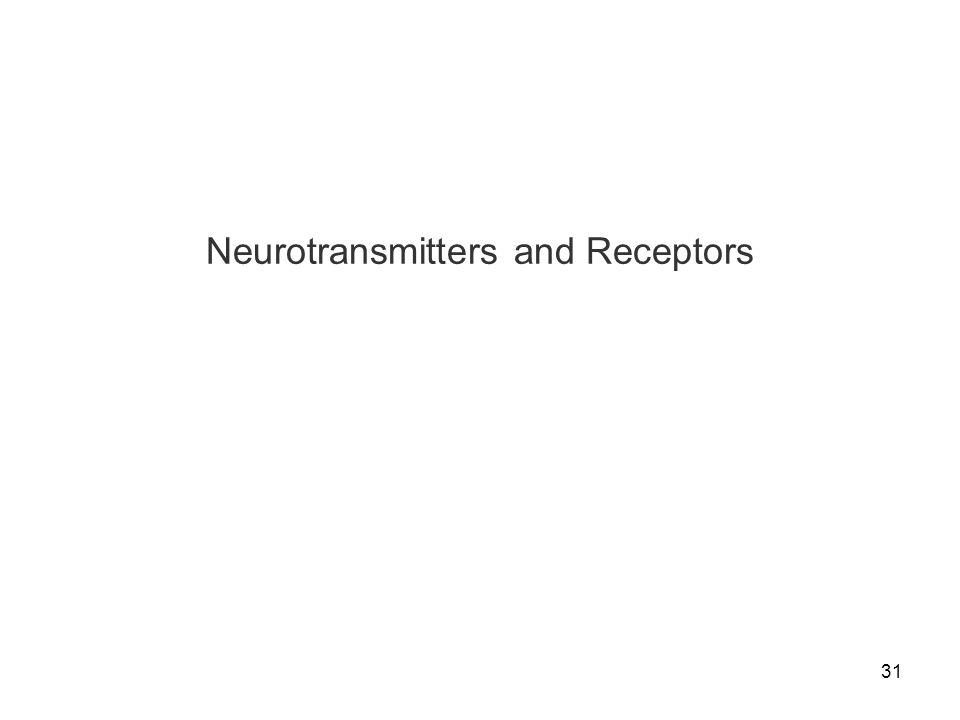 31 Neurotransmitters and Receptors