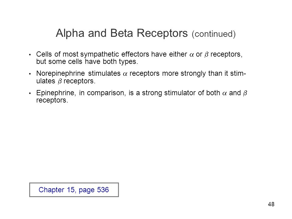 48 Alpha and Beta Receptors (continued) Cells of most sympathetic effectors have either  or  receptors, but some cells have both types. Norepinephri