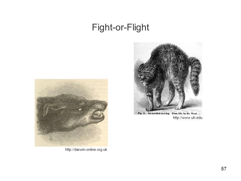 57 Fight-or-Flight http://www.uh.edu http://darwin-online.org.uk