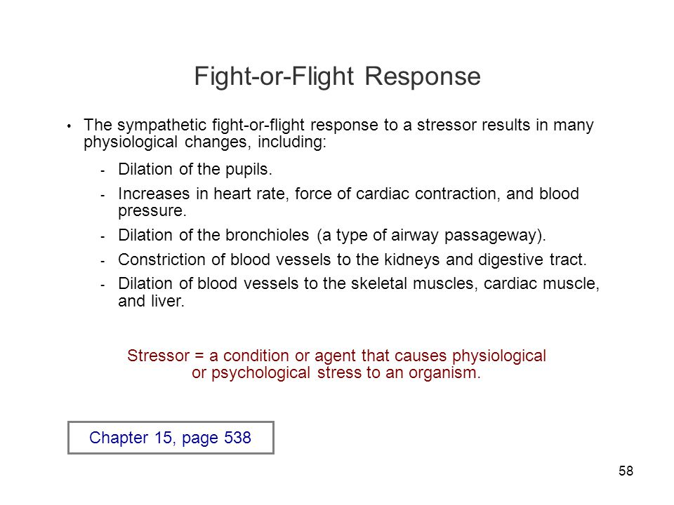 58 Fight-or-Flight Response The sympathetic fight-or-flight response to a stressor results in many physiological changes, including: - Dilation of the