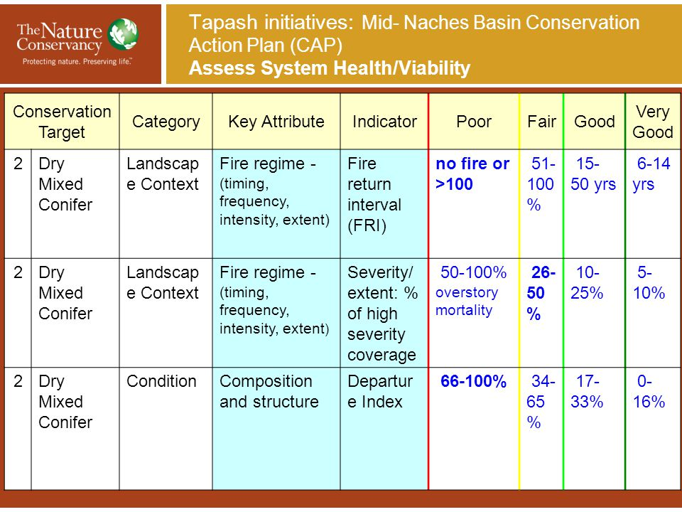 Tapash initiatives: Mid- Naches Basin Conservation Action Plan (CAP) Assess System Health/Viability Conservation Target CategoryKey AttributeIndicator