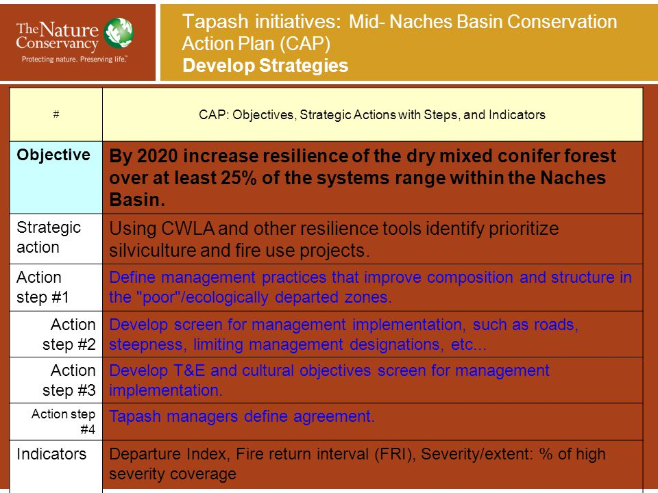Tapash initiatives: Mid- Naches Basin Conservation Action Plan (CAP) Develop Strategies # CAP: Objectives, Strategic Actions with Steps, and Indicator