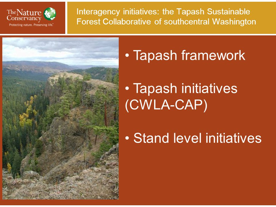 Tapash initiatives: Mid- Naches Basin Conservation Action Plan (CAP) Oak/Pine Dry Mixed Conifer Mesic Mixed Conifer Shrubbe-steppe High Elevation Forests Aquatic systems Northern Spotted Owl Mule Deer Big Horn Sheep Systems/Species