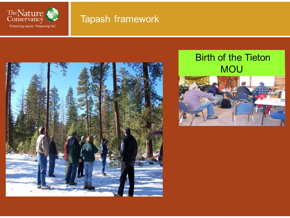Birth of the Tieton MOU Tapash framework