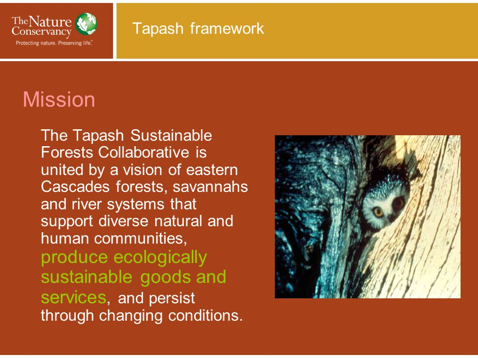 Tapash & Individual Stand Level Initiatives & Mid- scale analysis Tapash contract with Derek Churchill (Franklin's lab) at Tieton.