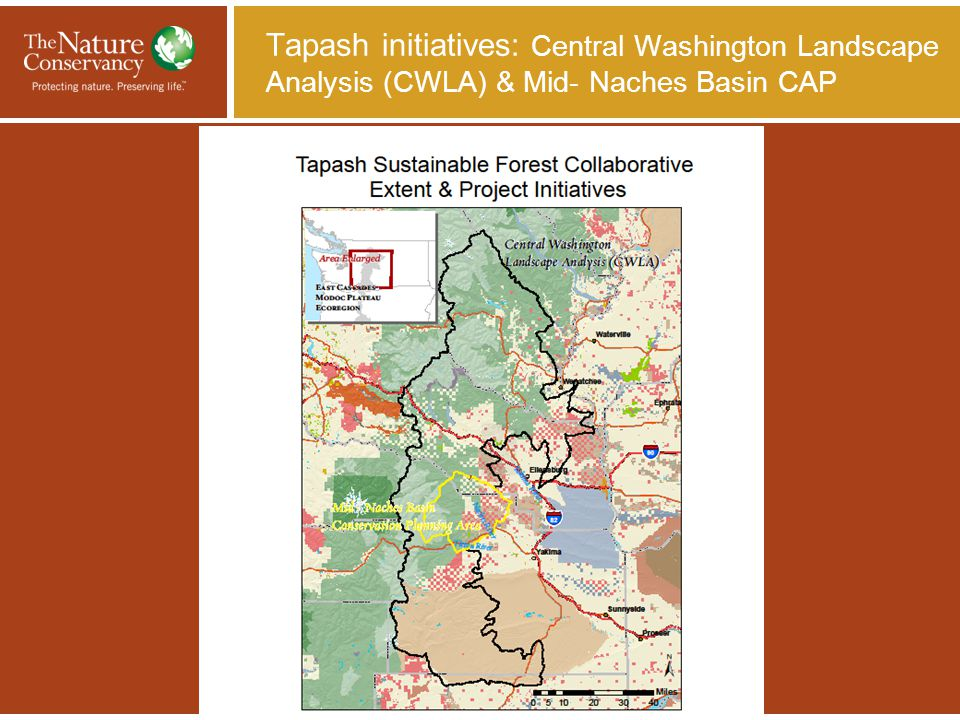 Tapash Sustainable Forest Collaborative: a Landscape Approach to Conserving Forests of the East Cascades TAPASH