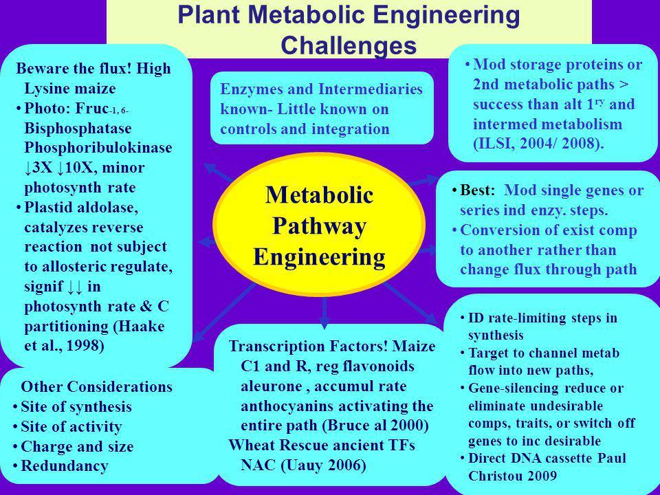 Plant Metabolic Engineering Challenges Transcription Factors.