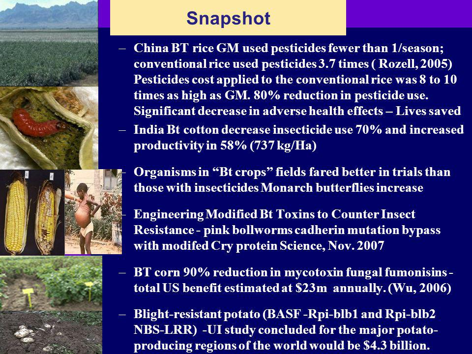 –China BT rice GM used pesticides fewer than 1/season; conventional rice used pesticides 3.7 times ( Rozell, 2005) Pesticides cost applied to the conventional rice was 8 to 10 times as high as GM.