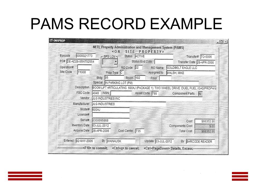 PAMS RECORD EXAMPLE