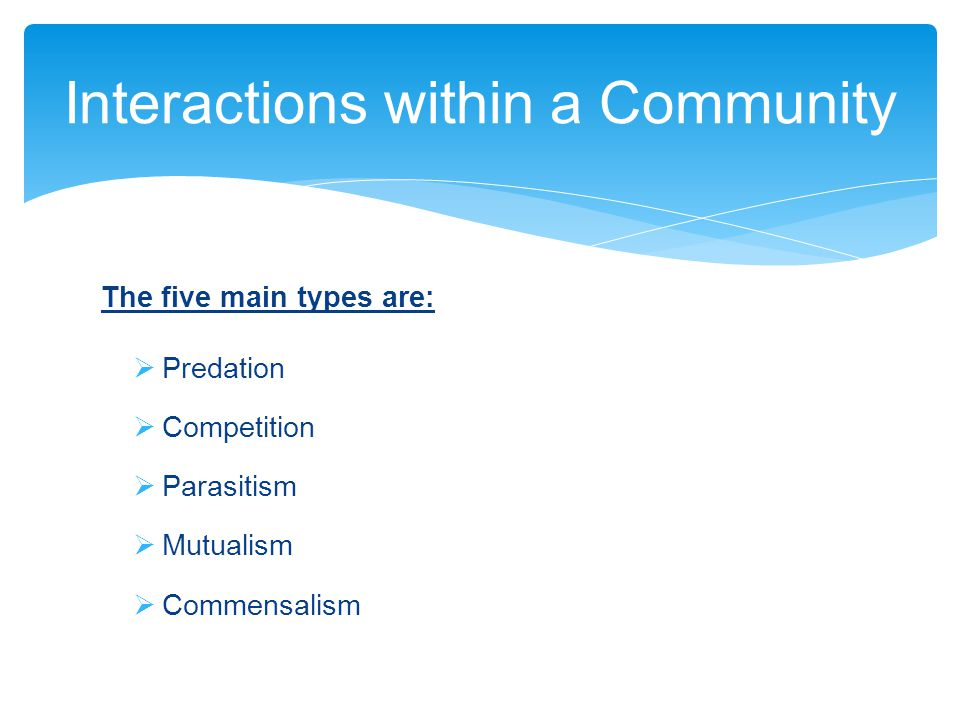 Interactions within a Community The five main types are:  Predation  Competition  Parasitism  Mutualism  Commensalism
