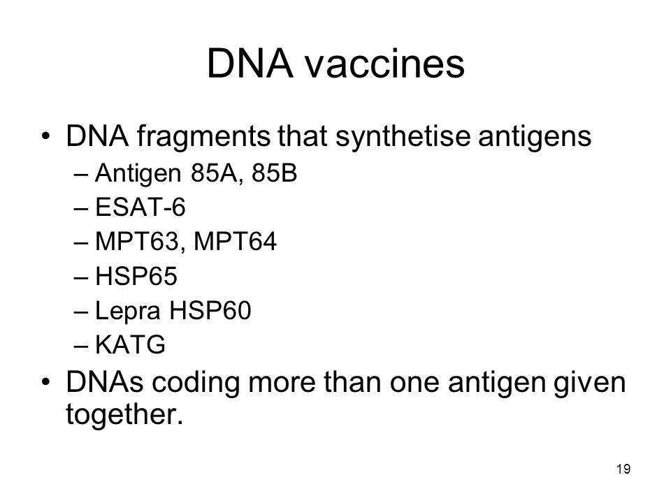 19 DNA vaccines DNA fragments that synthetise antigens –Antigen 85A, 85B –ESAT-6 –MPT63, MPT64 –HSP65 –Lepra HSP60 –KATG DNAs coding more than one ant