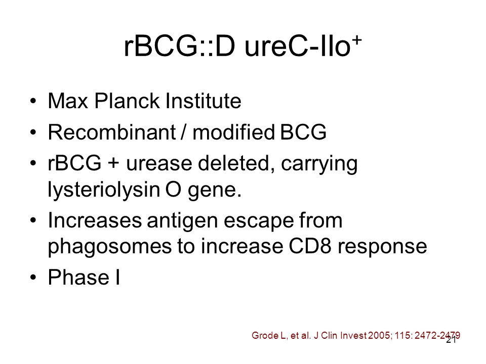 21 rBCG::D ureC-IIo + Max Planck Institute Recombinant / modified BCG rBCG + urease deleted, carrying lysteriolysin O gene.