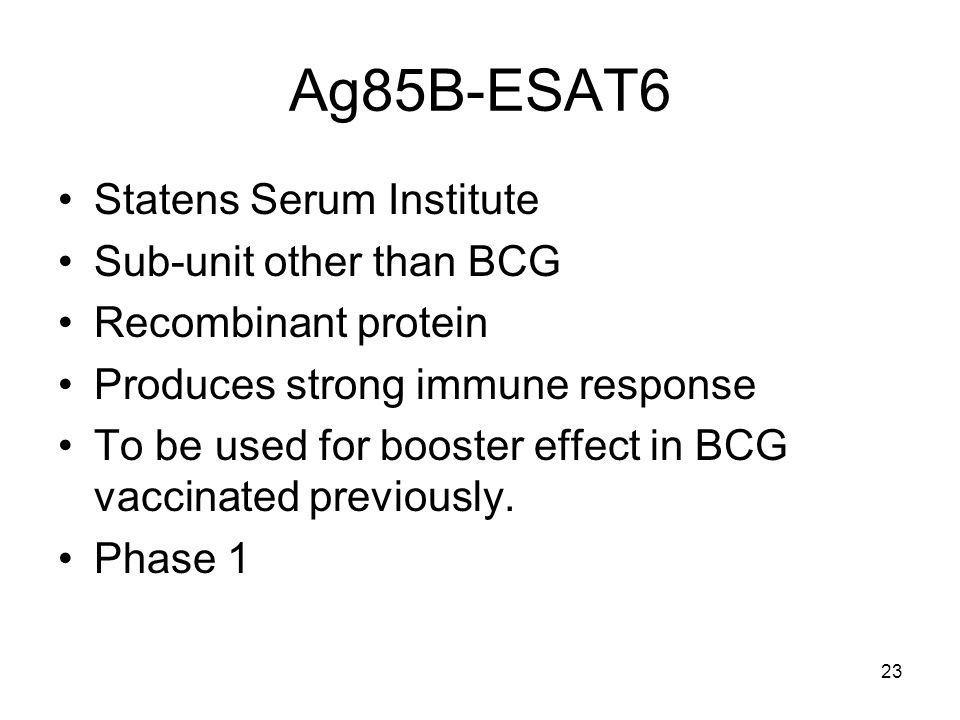 23 Ag85B-ESAT6 Statens Serum Institute Sub-unit other than BCG Recombinant protein Produces strong immune response To be used for booster effect in BC